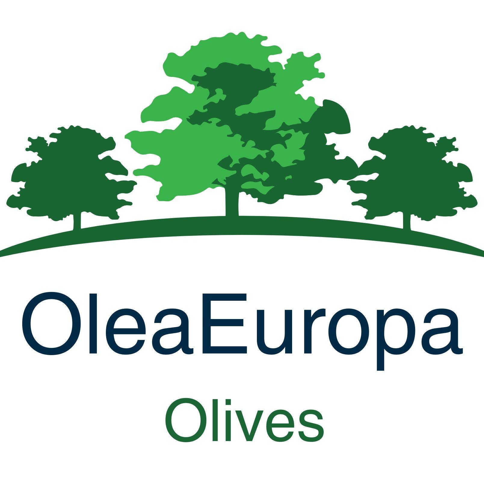 OLEA-EUROPA